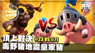 皇室 TV Royale ???? | #215 ???? 頂上對決 毒野豬地震皇家豬 ???? #23 VS #71