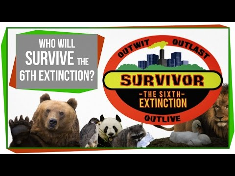 Who Will Survive The 6th Mass Extinction?