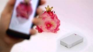 Как использовать карманный фотопринтер LG Pocket Photo (PD233) c технологией печати без чернил Zink(С карманным фотопринтером LG Pocket Photo очень просто печатать фотографии прямо со смартфона, когда и где вам..., 2013-07-27T10:03:04.000Z)