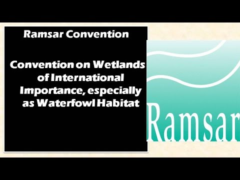 Ramsar Convention : Convention on wetlands of international