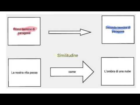 Paragone, similitudine e metafora
