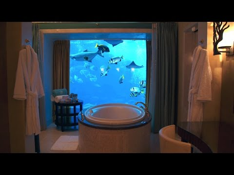 Check Out This Hotel Room's Crazy View Into a 3 Million Gallon Aquarium!