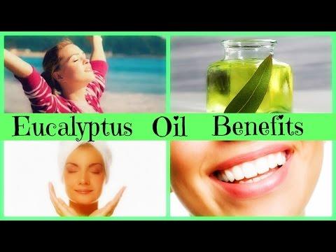 eucalyptus-essential-oil-benefits-|-naturally-treat-congestion-&-enhance-cognitive-ability!