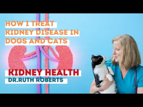 Dr. Ruth Roberts: How I Treat Kidney Disease In Dogs And Cats.