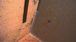 видео Красный Сулин, крыша по Сулинской 35 дырявая.