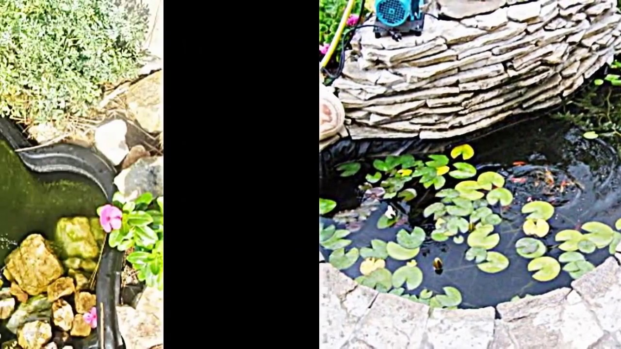 teich berwintern was ist bei wasserpflanzen und fischen zu beachten youtube. Black Bedroom Furniture Sets. Home Design Ideas