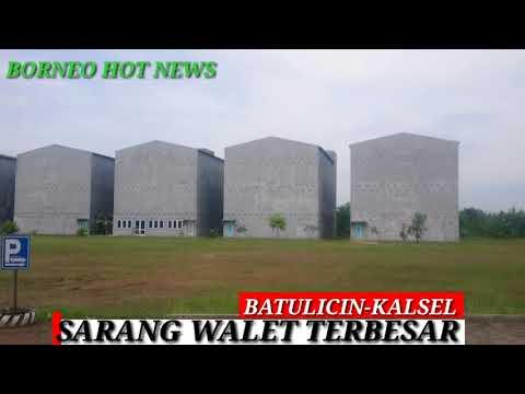 SARANG BURUNG WALET PALING BESAR DI BATUICIN- KALIMANTAN SELATAN
