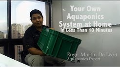 DIY Aquaponics System in 10 mins