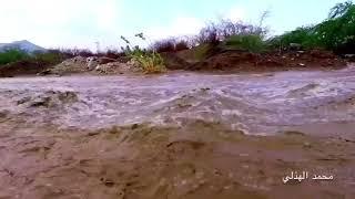 بالفيديو.. أمطار و سيول شديدة تضرب منطقة المشاعر المقدسة - صحيفة صدى الالكترونية
