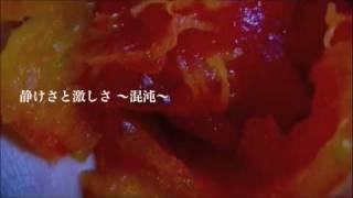 ライブのSE動画.