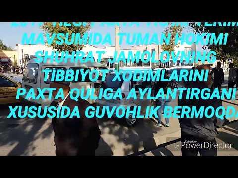 SAMARQAND TUMAN HOKIMI SHUHRAT JAMOLOV TIBBIYOT XODIMLARINI PAXTA QULIGA AYLANTIRGAN HD