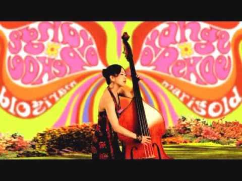 PV マリーゴールド (Marigold) - orange pekoe