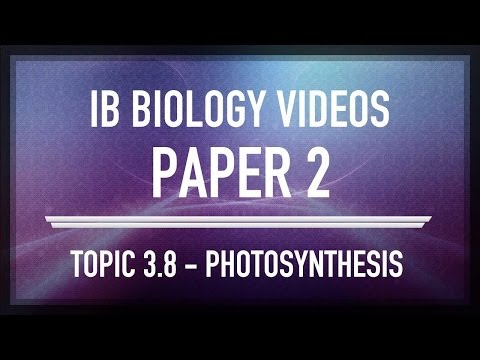 Photosynthesis - IB SL Biology Past Exam Paper 2 Questions