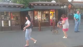 Одесса. Дорога в центр от автовокзала #1. Путешествия на игровом канале.