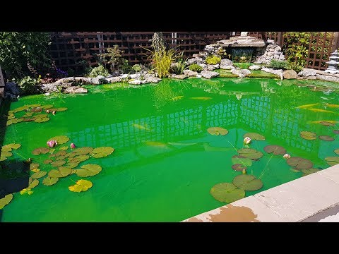 New combi drum filter installation youtube for Gravity pond filter setup