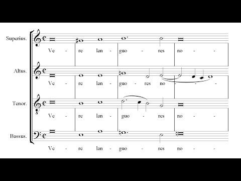 Victoria | Vere languores [á 4; Ensemble Plus Ultra]