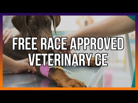 Free RACE approved veterinary CE