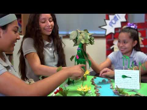 Descubra Dallas ISD - All Girls Schools