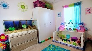 HAMSTER ROOM TOUR + FROZEN! Thumbnail