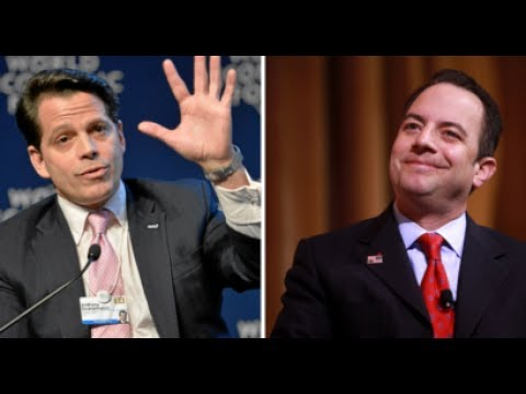 Anthony Scaramucci Wants FBI to Investigate Reince Priebus for Leaking Turmoil in the White House