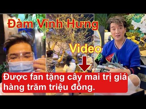 Đàm Vĩnh Hưng được fan chơi lớn tặng cây mai cao 5 mét, trị giá hàng trăm triệu đồng .