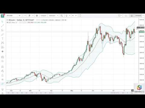 Hello and welcome to News BTC's Market Outlook Aug 3.