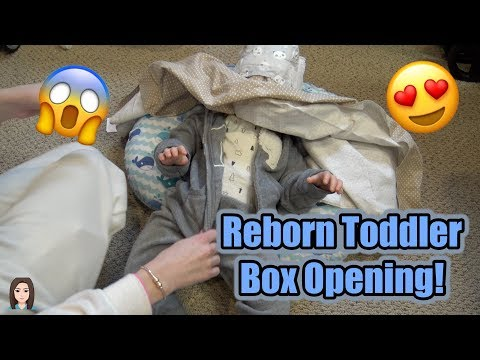 Reborn Toddler Boy Box Opening! AMAZING Christmas Gift From Mia Maria's Nursery   Kelli Maple