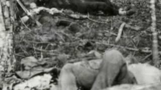 A Harvest Of Death (Civi War Photographers Brady & O'Sullivan)