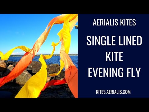 Single Lined Kite Evening Fly