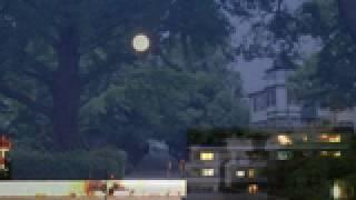 大津美子 - 青い月夜の並木路