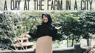 a day at the farm in a city