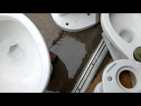 Miniature Eljer Silette Toilet Flushing Doovi