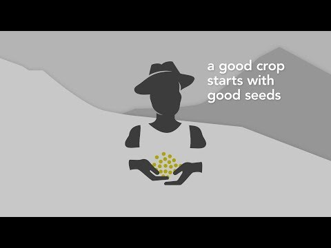 Introducing the Access to Seeds Index