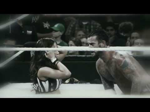 cm-punk-and-aj-lee---why