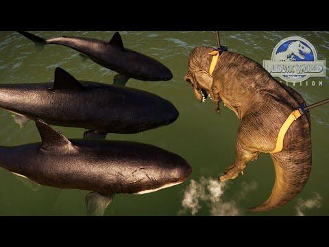 DANDO DE COMER A MEGALODON UN TIRANOSAURIO REX!! Tiburones dinosaurio Jurassic World Evolution |