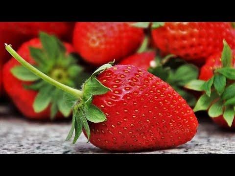 شاهد: آلاف الفنلنديين ينضمون إلى المزارعين لإنقاذ موسم حصاد الفراولة …  - 19:59-2020 / 7 / 7