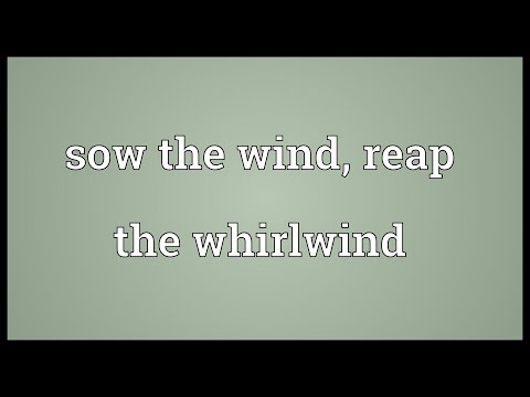 Sow the wind, reap the whirlwind Meaning - YouTube