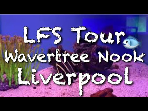 LFS Tour - Wavertree Nook Liverpool