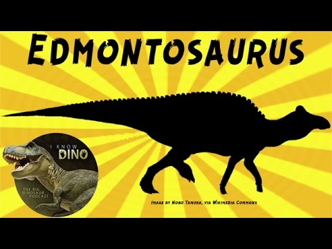 Edmontosaurus: Dinosaur of the Day