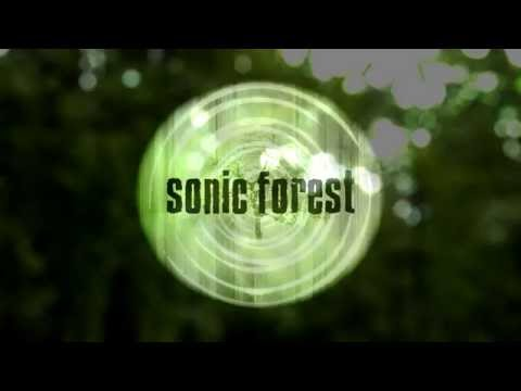 Sonic Forest: Experimental Granular Instrument (Supports Charity)