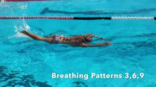 Slow Motion Breathing Patterns Freestyle Front Crawl