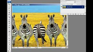 Видеоуроки Фотошоп 1-02 Растровая и векторная графика(Видеокурс Фотошоп Часть 1 Теория Раздел 02 Растровая и векторная графика., 2011-11-29T16:23:46.000Z)