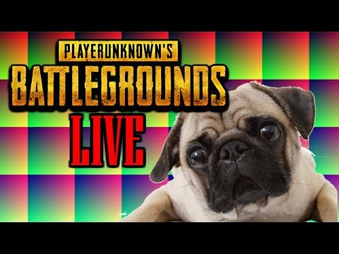 🔴 Playerunknown's Battlegrounds - FIRST PERSON VIEW ALL DAY