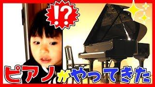 ドッキリ!おうちにピアノがやってきた!憧れのグランドピアノ?ふたりは...