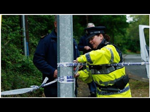 Wicklow abduction: CCTV helped gardaí identify suspect