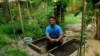 Raised Bed gardening - Planting beet seeds