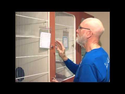 SPCA Volunteers