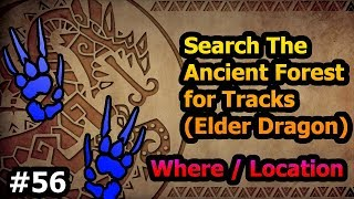 Download lagu PART 56 Search The Ancient Forest For Tracks MHWorld MP3