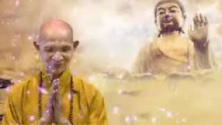 ❤Truyện Tâm Linh Thích Giác Hạnh Có Thật❤  Các Loài Vật Niệm Phật Vãng Sanh❤