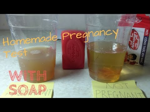 Homemade Pregnancy Test ...